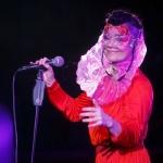 Робин Каролан: Новая пластинка Бьорк сорвет всем крышу