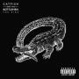 Catfish And The Bottlemen анонсировали новый альбома  The Ride